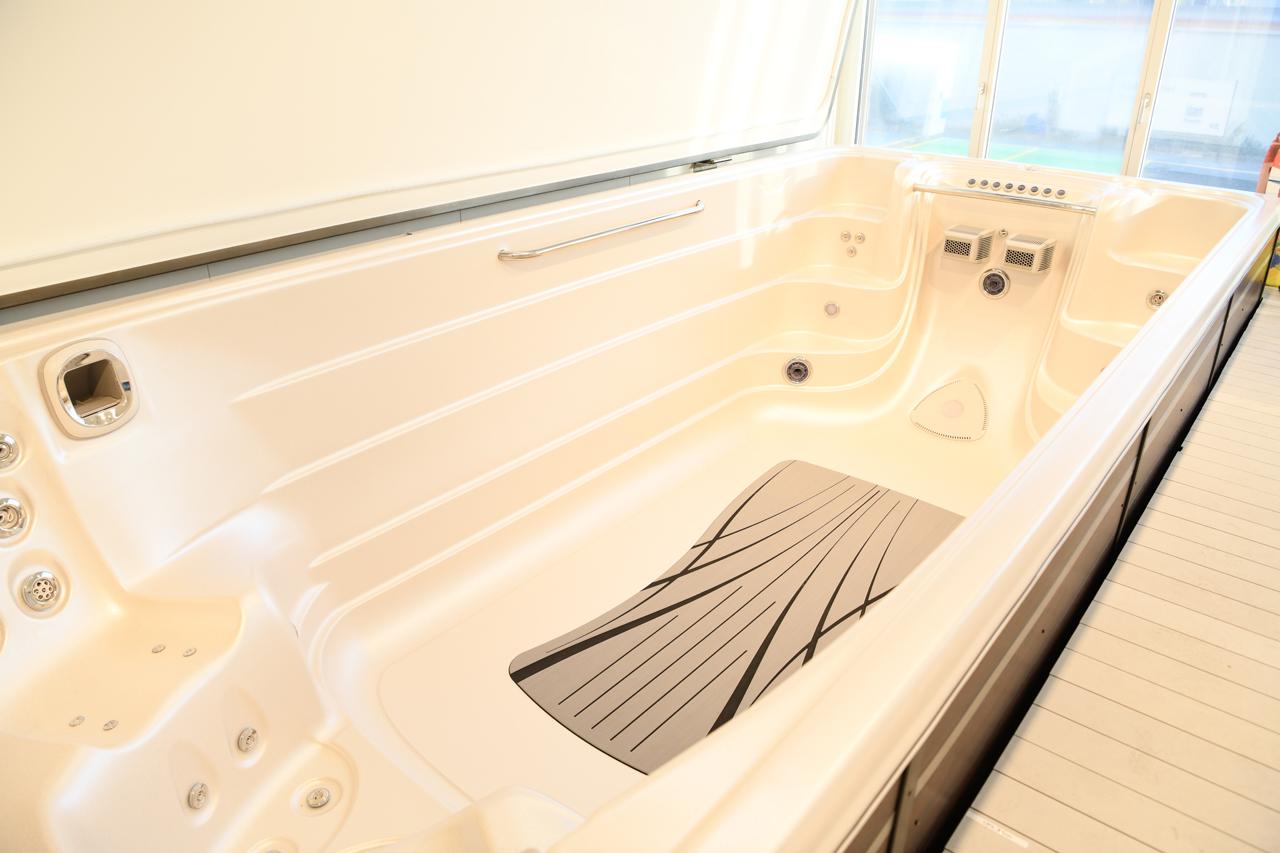 Lieferung Hydropool Swim-Spa 19EX Executive | Top-Whirlpool.ch