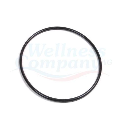Brominator Filterdeckel-Dichtung / O-Ring Pentair