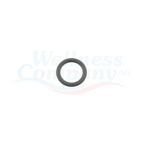 Jacuzzi O-Ring für Wasser Regler (Diverter)